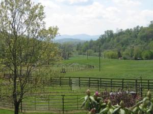 Farm 2012
